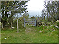 SZ5379 : Bridleway gate, Appuldurcombe Down by Robin Webster
