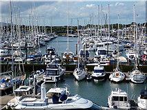 SZ3394 : Lymington Marina by John Lucas