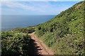 SX4948 : South West Coast Path around Wembury Point by Hugh Venables