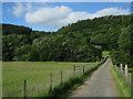 NY2514 : Track across Stonethwaite Beck by Hugh Venables