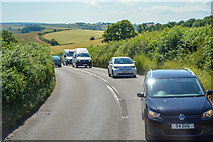 SX8460 : Berry Pomeroy : The A385 by Lewis Clarke