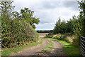 NZ3323 : Field entry from Elstob Lane by Trevor Littlewood