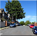 ST1067 : Dominant tree, Romilly Road, Barry by Jaggery