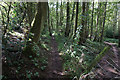 SP2768 : Path leading to Middle Woodloes Farm by Ian S