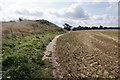 SP2767 : Path leading to Middle Woodloes Farm by Ian S