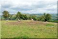 SO2764 : Tumulus near Offa's Dyke by Jeff Buck