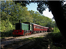 SO6302 : Dean Forest Railway in Lydney by Gareth James