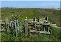 TM4555 : Gate along the Suffolk Coast Path by Mat Fascione