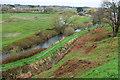 SY9287 : River Piddle at Wareham by Derek Harper