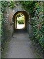 SK5453 : Newstead Abbey Gardens – Great Garden tunnel by Alan Murray-Rust