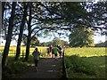 SK3581 : Runners on Graves parkrun by Graham Hogg