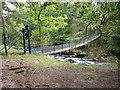 NY9027 : Fragile bridge by James Allan