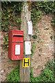 SX8654 : Postbox, Dittisham by Derek Harper
