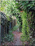 TQ0487 : The South Bucks Way south of Savay Lane by Mike Quinn