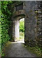 V9354 : Ilnacullin/Garinish Island, Co. Cork - archway in wall by the Martello Tower by P L Chadwick