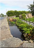 J0326 : The canalised Camlough River by Eric Jones