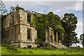 W2789 : Ireland in Ruins Pt II: Mount Leader House, Co. Cork (2) by Mike Searle