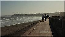 SX9777 : Coast path to Dawlish by Derek Harper