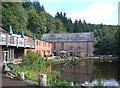 SO6610 : Mill and Pond, Dean Heritage Centre by Des Blenkinsopp