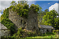 S3351 : Castles of Munster: Farranrory, Tipperary (7) by Mike Searle