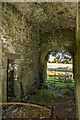 S1126 : Castles of Munster: Moorstown, Tipperary - revisited (6) by Mike Searle
