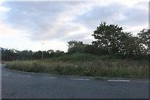 TL2760 : St Ives Road, Eltisley by David Howard