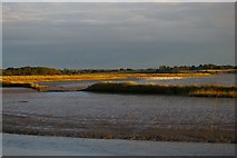 TM3957 : River Alde downstream of Snape by Christopher Hilton