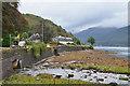 NN2903 : Loch Long shore and burn, Arrochar by Jim Barton