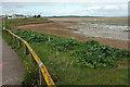 SX9981 : Estuary edge, Exmouth by Derek Harper