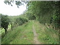 NT6719 : Footpath  back  into  Natural  Wood by Martin Dawes