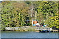 SD3890 : Landing stage and lakeshore at Haws Wood by David Martin