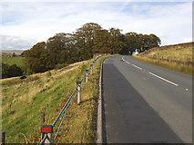 SD9657 : Grassington Road near Rylstone by Stephen Craven