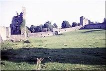 S4943 : Kells Priory inside view by Martin Richard Phelan