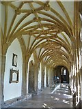 ST5545 : Wells Cathedral [2] by Michael Dibb