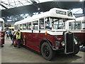 NT2574 : Edinburgh Corporation Transport vintage bus  by M J Richardson