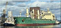 """J3576 : The """"AS Elenia"""", Belfast harbour (September 2019) by Albert Bridge"""