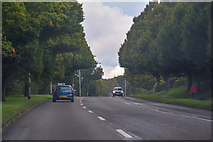 SJ8542 : Newcastle-Under-Lyme : Clayton Road A519 by Lewis Clarke
