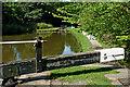 SJ9689 : Peak Forest Canal north of Marple Locks No 5, Stockport by Roger  Kidd
