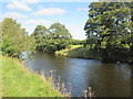 NT5417 : River  Teviot  on  its  way  to  the  sea by Martin Dawes