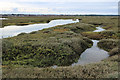 TF9244 : Creek in Wells Salt Marshes by Hugh Venables