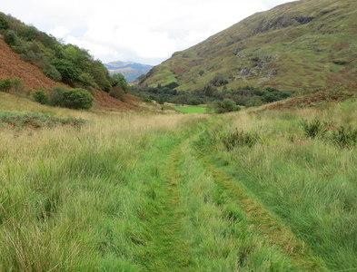 NN0056 : Grass track on Ardsheal Hill descending towards Lagnaha by Peter Wood