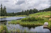 NU0702 : Tumbleton Lake by Ian Capper