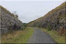 SK1462 : Cutting on the Tissington Trail by Chris Heaton