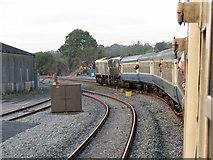 W5598 : Railtour at Mallow by Gareth James