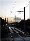 O1132 : Luas tram lines at Blackhorse by Gareth James