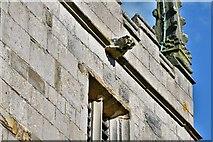 SK4665 : Ault Hucknall, St. John the Baptist Church: Gargoyle 1 by Michael Garlick