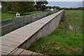 SX9389 : Flood Defence Wall in the Exe Valley, Devon by Andrew Tryon