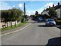 TL7818 : Vicarage Avenue, White Notley by Adrian Cable