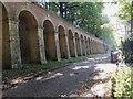 TQ3371 : Retaining wall below Crystal Palace Parade by Robin Stott