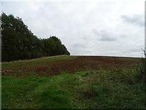 SP4339 : Hillside field off Broughton Road by JThomas